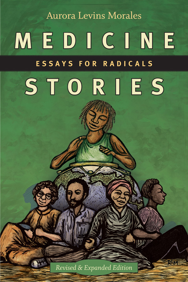Medicine Stories: Essays for Radicals - New
