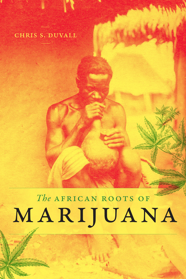 Image result for african  cannabis ecomony""